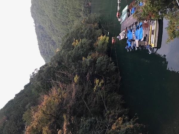 葛の葉店スタッフ 七色ダム釣果情報 【2020年11月13日】サムネイル