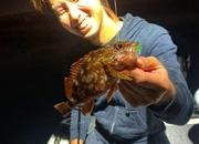 寝屋川店スタッフ齋藤の琵琶湖ガイド釣行!(ソルト編第3弾)サムネイル