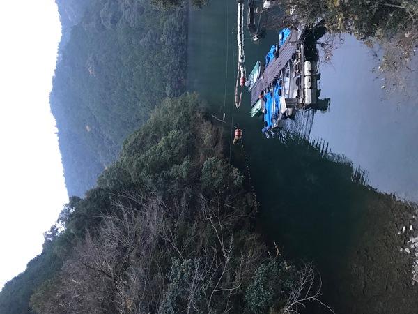 葛の葉店スタッフ 七色ダム釣果情報 【2020年12月9日】サムネイル