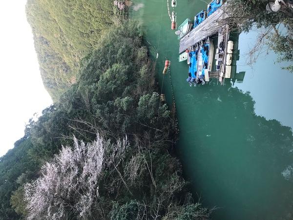 葛の葉店スタッフ 七色ダム釣果情報 【2021年3月18日】サムネイル