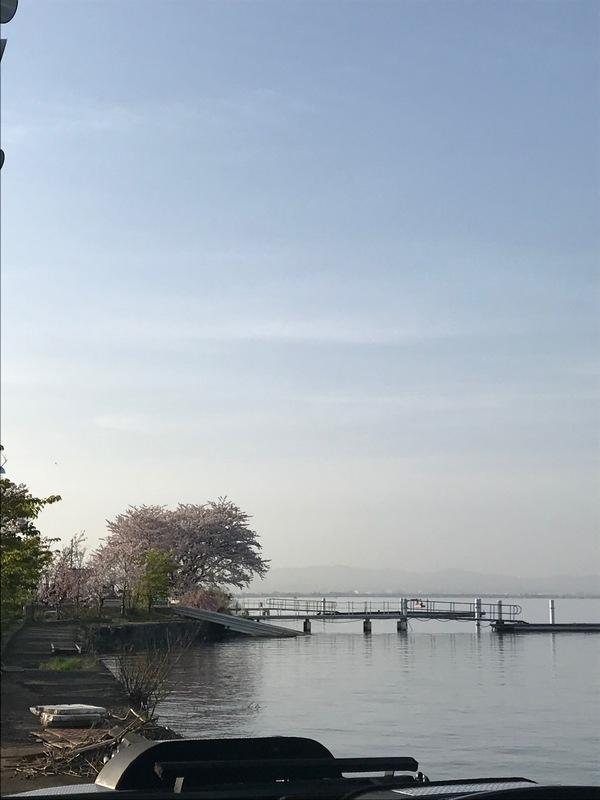 葛の葉店スタッフ 「番外編」琵琶湖釣果情報 【2021年4月1日】サムネイル